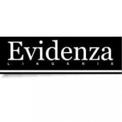 Evidenza